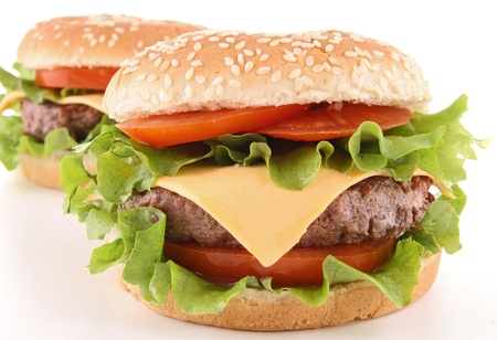 isolated hamburger photo