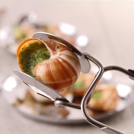 bourgogne: spoon with bourgogne snail