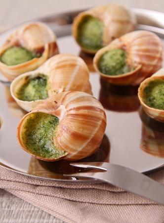 bourgogne: bourgogne snail