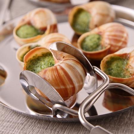 french food: bourgogne snail