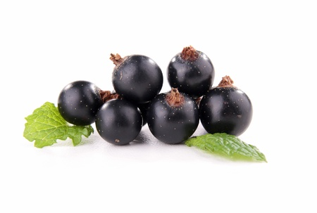 isolated blackcurrant photo