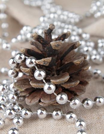 pine cone: pigna e decorazioni natalizie
