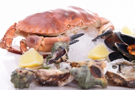 seafood platter on ice photo