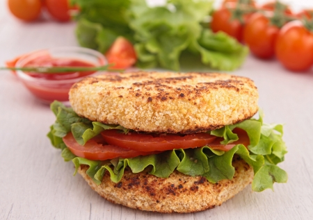 vegetarian hamburger: vegetarian hamburger