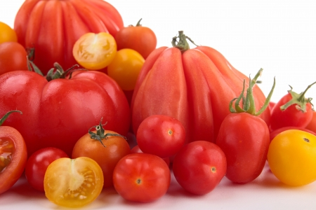 different variety of tomatoes photo
