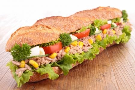tuna mayo: sandwich