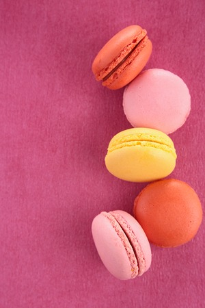 epicure: macaroon