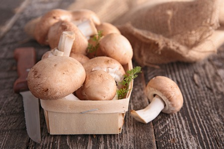 edibles: edibles mushrooms