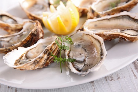 epicure: fresh oyster Stock Photo