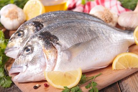 dorado fish: dorado fish on board Stock Photo