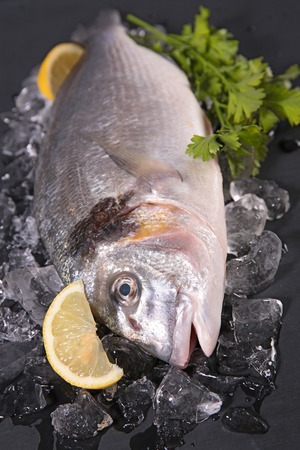 ices: raw fish with ices