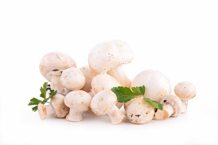 isolated on white: raw mushrooms