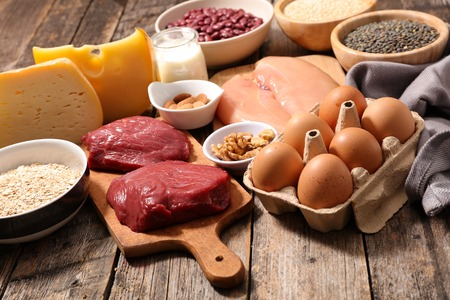 protein food: protein sources
