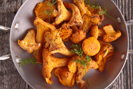 mushroom,chanterelle Stock Photo - 89680174