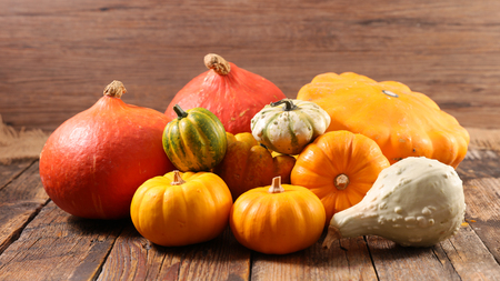 variety of pumpkin