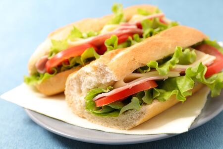 sandwich- bread with ham, cheese and tomato
