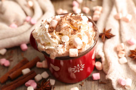 hot chocolate milk with cocoa and marshmallow