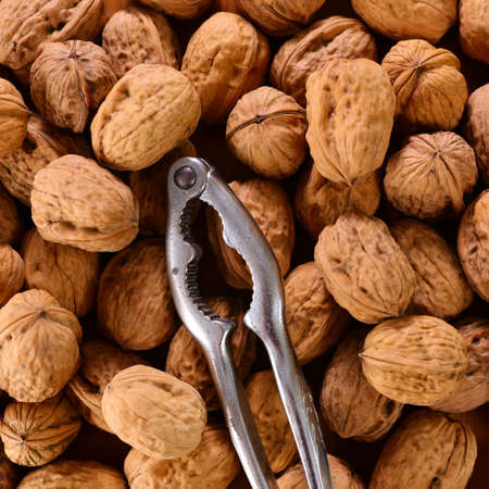 walnut and nutcracker background- top view