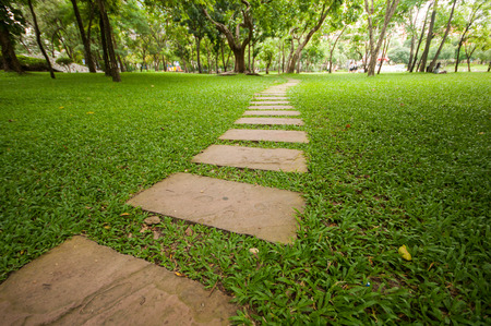 Rock walk way in the garden with green grass and trees