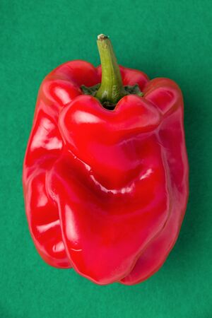 ugly embossed bell peppers on a dark green background