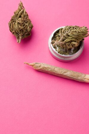 marijuana in a vertical orientation on a pink background. copy space Imagens
