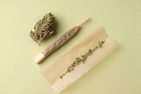the process of making a roll of cigarettes with marijuana on a green background