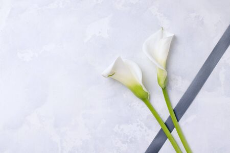 White flowers callas with mourning ribbon on a concrete background. Copy space. The concept of mourning and sorrow