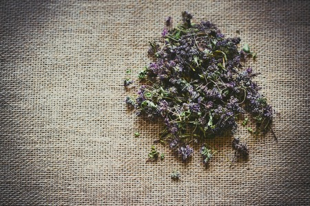 purples: broken dry purples lie in sackcloth, filter Stock Photo