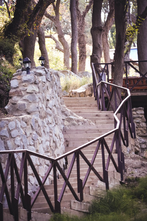 parapet wall: wooden staircase with a stone wall with trees, filter