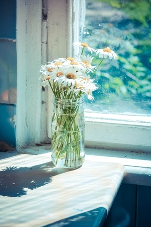 bouquet of daisies in a glass bank on a table near the window, filter Stock Photo