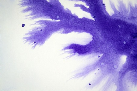 spreads: ink blot flowed, on a white background, isolated association