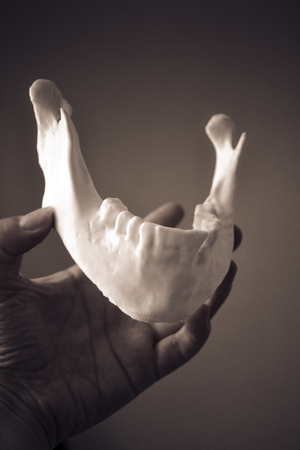 A girl holds a mandible printed on a 3d printer on her palm close-up. Automatic three dimensional performs plastic modeling. Progressive modern additive technology Stock Photo