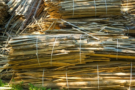 sawn: huge pile of large sawn logs bars from the forest. Harvesting firewood for the winter