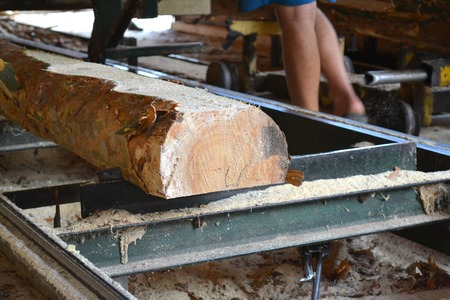 Sawmill. Process of machining logs in equipment sawmill machine saw saws the tree trunk on the plank boards. Wood sawdust work sawing timber wood wooden woodworking Stock Photo