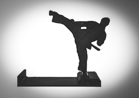 Objects printed by 3d printer Isolated on white background. Black karate figure.