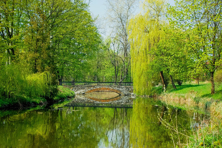 low stone bridge over a pond of water among the trees with bright green leaves in spring park