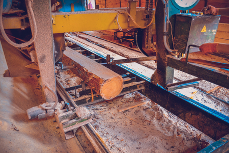 Sawmill. Process of machining logs in equipment sawmill machine saw saws the tree trunk on the plank boards. Wood sawdust work sawing timber wood wooden woodworking Archivio Fotografico