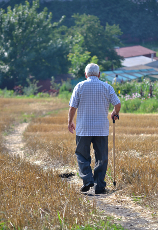 gray-haired man walking along the road with cane Banco de Imagens
