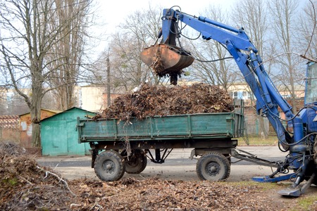 Cleaning dry branches and grass on city streets loading into truck trailer. Cleaning dry leaves tractor bucket. Old tractor bucket picks up old and dry branches and leaves and plunges it into a truck. Banco de Imagens