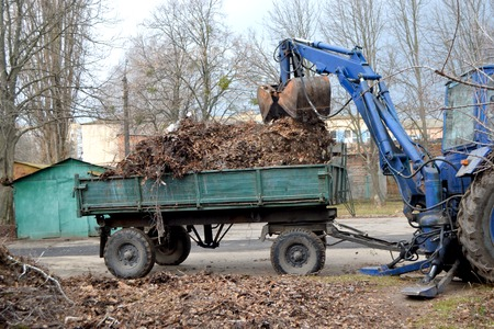 Cleaning dry branches and grass on city streets loading into truck trailer. Cleaning dry leaves tractor bucket. Old tractor bucket picks up old and dry branches and leaves and plunges it into a truck. Reklamní fotografie