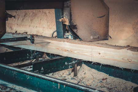 Sawmill. Process of machining logs in equipment sawmill machine saw saws the tree trunk on the plank boards. Wood sawdust work sawing timber wood wooden woodworking Standard-Bild