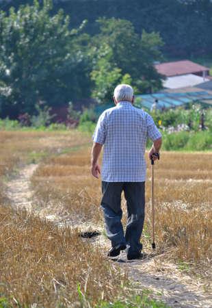 gray-haired man walking along the road Standard-Bild