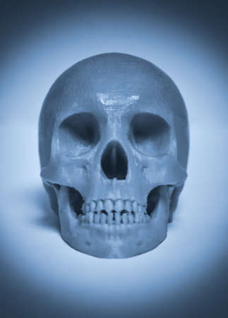 Skull printed with plastic of gray color on a 3d printer. Standard-Bild