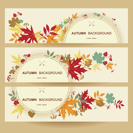autumn background: Autumn abstract floral background.