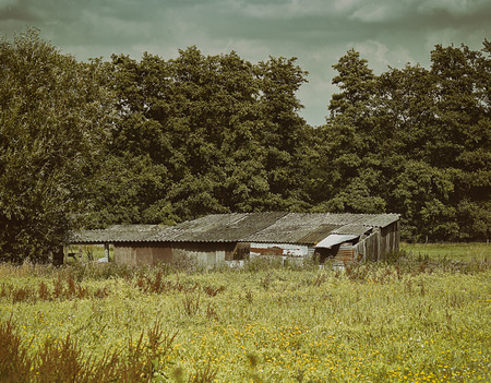 neglected: A small neglected barn in a forest in the Netherlands. Stock Photo