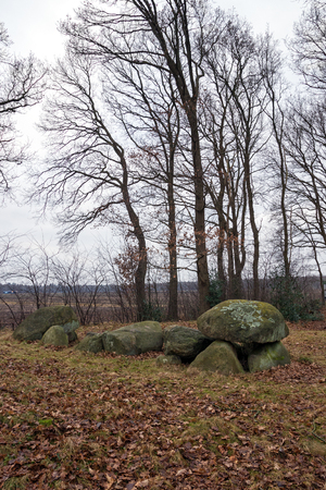 county side: Dolmen D32, an ancient megalithic tomb in the Netherlands on a cloudy day in winter. Stock Photo