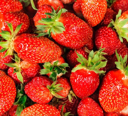 Placer big juicy delicious berries strawberry closeup