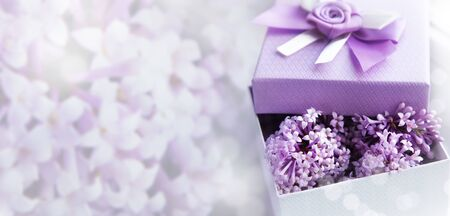 Greeting card in lilac color. Blurred background. Blooming lilac and gift box with lilac flowers. Copy space.