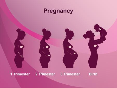 Etapas del embarazo, trimestres y nacimiento, la mujer embarazada y del bebé en el fondo de color rosa