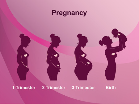 embarazada: Etapas del embarazo, trimestres y nacimiento, la mujer embarazada y del bebé en el fondo de color rosa